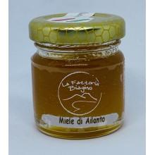 Miele di Ailanto 40 gr