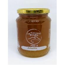 Miele di Ailanto 1000 gr