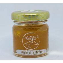 Miele di Millefiori 40 gr